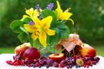 Atelier de création d'un parfum naturel de type fruité-floral